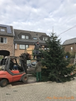 2020-11-28_Weihnachtsbaum_03