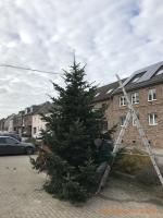 2020-11-28_Weihnachtsbaum_04